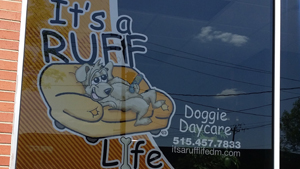 Ruff Life window Swag
